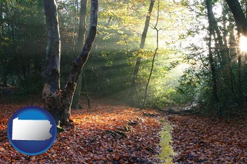 sunbeams in a beech forest - with Pennsylvania icon